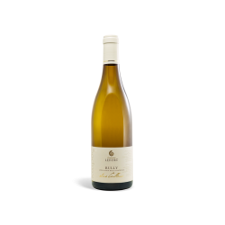 Rully « Les Cailloux » 2016 Domaine LEFORT
